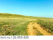 Купить «Road in the boundless steppe», фото № 26959430, снято 21 сентября 2015 г. (c) Евгений Ткачёв / Фотобанк Лори