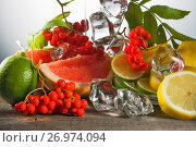 Купить «Mountain ash berries on branches with leaves and the cut citrus fruits ice pieces», фото № 26974094, снято 4 сентября 2016 г. (c) Anatoly Timofeev / Фотобанк Лори
