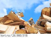 Купить «Chopped birch firewood for heating in winter», фото № 26980518, снято 28 августа 2017 г. (c) Иван Карпов / Фотобанк Лори