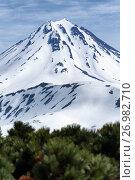 Купить «Вилючинский вулкан на Камчатке», фото № 26982710, снято 18 июня 2017 г. (c) А. А. Пирагис / Фотобанк Лори
