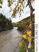 Купить «Горная камчатская река осенью», фото № 26983182, снято 18 сентября 2013 г. (c) А. А. Пирагис / Фотобанк Лори