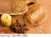 Купить «Honeycomb, pollen and propolis», фото № 26991586, снято 25 сентября 2016 г. (c) easy Fotostock / Фотобанк Лори