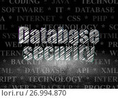 Купить «Programming concept: Database Security in grunge dark room», фото № 26994870, снято 19 января 2017 г. (c) easy Fotostock / Фотобанк Лори