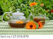 Купить «Чай с календулой и мятой», эксклюзивное фото № 27010870, снято 26 июля 2017 г. (c) Елена Коромыслова / Фотобанк Лори