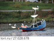 Купить «Парусник на озере в городе Гаджиево с птицами на мачтах», фото № 27028678, снято 1 октября 2017 г. (c) Юлия Юриева / Фотобанк Лори