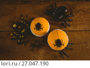 Купить «Cup cakes with artificial spider on wooden table», фото № 27047190, снято 26 мая 2017 г. (c) Wavebreak Media / Фотобанк Лори