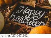 Купить «Happy halloween text on slate with autumn leaves», фото № 27047242, снято 26 мая 2017 г. (c) Wavebreak Media / Фотобанк Лори