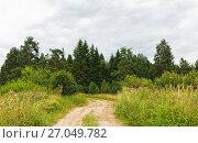 Извилистая грунтовая дорога, уходящая в лес. Сельский пейзаж. Стоковое фото, фотограф Макаров Алексей / Фотобанк Лори