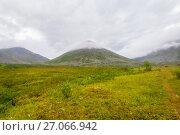 Tundra in the Subpolar Urals with views of the mountains on the horizon. Стоковое фото, фотограф Игорь Дудырев / Фотобанк Лори