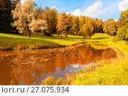 Autumn landscape. Autumn trees at the bank of the river in sunny day, фото № 27075934, снято 21 сентября 2017 г. (c) Зезелина Марина / Фотобанк Лори