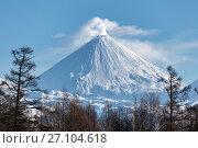Купить «Вулкан Ключевская сопка на Камчатке», фото № 27104618, снято 7 января 2016 г. (c) А. А. Пирагис / Фотобанк Лори