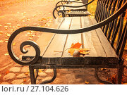 Autumn landscape - yellowed autumn leaf on the wooden lonely bench in the autumn park, фото № 27104626, снято 3 октября 2016 г. (c) Зезелина Марина / Фотобанк Лори
