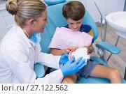 Купить «Dentist teaching boy brushing teeth on dentures», фото № 27122562, снято 11 декабря 2016 г. (c) Wavebreak Media / Фотобанк Лори