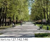 Купить «Пешеходная дорожка на Измайловском бульваре. Район Измайлово. Москва», эксклюзивное фото № 27142146, снято 7 мая 2017 г. (c) lana1501 / Фотобанк Лори
