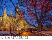 Купить «Vienna town hall at christmastime», фото № 27155102, снято 20 ноября 2017 г. (c) Sergey Borisov / Фотобанк Лори