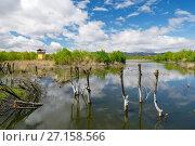 Купить «Lashi Lake margin at Lijiang Lashihai Plateau Wetland Nature Reserve, Yunnan. Important Naxi and Li ethnic people and major bird migration area.», фото № 27158566, снято 6 апреля 2016 г. (c) age Fotostock / Фотобанк Лори