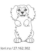 Купить «Милый щенок Кокер Спаниеля встал на задние лапки. Контурная иллюстрация в мультипликационном стиле. Изолированно на белом фоне, страница для книжки-раскраски.», иллюстрация № 27162302 (c) Анастасия Некрасова / Фотобанк Лори