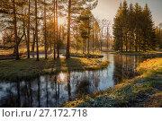 Купить «Солнечное морозное утро в осеннем парке», фото № 27172718, снято 2 ноября 2017 г. (c) Юлия Бабкина / Фотобанк Лори