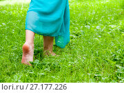 Купить «Female feet without shoes are walking on the grass», фото № 27177226, снято 21 июля 2017 г. (c) Катерина Белякина / Фотобанк Лори