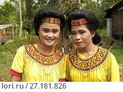 Купить «Tana Toraja women with beadwork encrusted costume at a family ceremony to mark a wedding, Sulawesi, Indonesia, South East Asia.», фото № 27181826, снято 6 февраля 2017 г. (c) age Fotostock / Фотобанк Лори