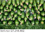 Купить «Fresh cucumbers at the market», фото № 27218402, снято 10 мая 2014 г. (c) Надежда Болотина / Фотобанк Лори