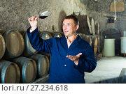 Купить «Wine expert checking quality of red wine», фото № 27234618, снято 22 сентября 2016 г. (c) Яков Филимонов / Фотобанк Лори