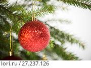 Купить «Christmas decorations, one red ball hanging on the Christmas tree», фото № 27237126, снято 25 ноября 2017 г. (c) Юлия Бабкина / Фотобанк Лори