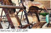 Whole bull carcass fried on spit on Medieval Fiesta in Besalu, Spain. Стоковое видео, видеограф Яков Филимонов / Фотобанк Лори