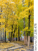 Купить «Эко парк Пехорка», фото № 27238478, снято 13 октября 2017 г. (c) Сергей Паникратов / Фотобанк Лори