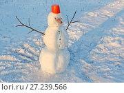 Смешной снеговик, с носом из морковки, с красным ведром на голове и руками-палками в зимнем парке на снегу. Стоковое фото, фотограф Мiлана Х / Фотобанк Лори