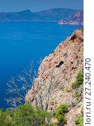 Купить «Coastal rocks with dead tree. Corsica», фото № 27240470, снято 5 июля 2015 г. (c) EugeneSergeev / Фотобанк Лори