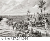 Купить «Early settlers in Babylonia draing the marshes by building a dam of wattles and earth across a branch stream of the Eupharates river. After the painting...», фото № 27241086, снято 31 марта 2020 г. (c) age Fotostock / Фотобанк Лори