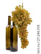 Купить «Спелая большая гроздь винограда кишмиш на белом фоне с двумя бутылками», фото № 27244318, снято 25 ноября 2017 г. (c) V.Ivantsov / Фотобанк Лори