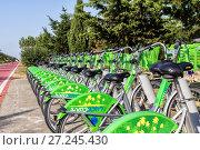 Купить «Bike rental system in Batumi. The system is created by the municipality of Batumi», фото № 27245430, снято 12 июля 2013 г. (c) Евгений Ткачёв / Фотобанк Лори