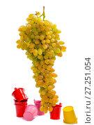 Купить «Спелая большая гроздь винограда кишмиш на белом фоне с цветными вёдрами», фото № 27251054, снято 25 ноября 2017 г. (c) V.Ivantsov / Фотобанк Лори