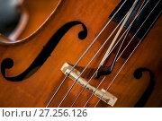 Купить «Крупным планом виоолончель в симфоническом оркестре перед концертом классической музыки», фото № 27256126, снято 1 декабря 2017 г. (c) Николай Винокуров / Фотобанк Лори