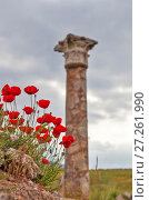 Купить «Красные маки на фоне античной колонны. Иераполис, Турция.», фото № 27261990, снято 8 мая 2015 г. (c) Сергей Афанасьев / Фотобанк Лори