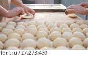 Купить «Cooks roll the dough for baking, raw dough on the Board», видеоролик № 27273430, снято 6 декабря 2019 г. (c) Константин Шишкин / Фотобанк Лори