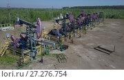 Купить «Группа работающих нефтяных станков качалок», видеоролик № 27276754, снято 13 июня 2017 г. (c) Алексей Кокорин / Фотобанк Лори