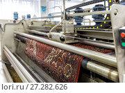 Купить «Автоматическая химчистка ковров», фото № 27282626, снято 19 июня 2017 г. (c) Евгений Ткачёв / Фотобанк Лори