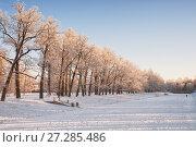 Купить «Екатерининский парк на закате зимнего дня. Пушкин», фото № 27285486, снято 19 января 2014 г. (c) Юлия Бабкина / Фотобанк Лори