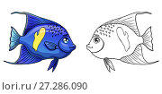 Купить «Синяя с желтым пятном морская аквариумная рыба Арабский Ангел. Цветной и контурный варианты изолированно на белом фоне. Иллюстрация в мультипликационном стиле, раскраска», иллюстрация № 27286090 (c) Анастасия Некрасова / Фотобанк Лори