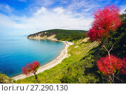 Купить «Beautiful view over the sea from a height, with flowers», фото № 27290130, снято 18 июня 2017 г. (c) Алексей Маринченко / Фотобанк Лори