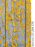 Купить «Detail of old wooden wall with the remnants of the leafless paint ochre. Peeling paint reveals the texture of the wood», фото № 27294170, снято 25 июля 2017 г. (c) Наталья Гармашева / Фотобанк Лори