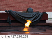 Купить «Россия. Москва, могила Неизвестного солдата у Кремлёвской стены», фото № 27296258, снято 26 августа 2017 г. (c) Литвяк Игорь / Фотобанк Лори