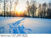 Ski track in countryside. Стоковое фото, фотограф Sergey Borisov / Фотобанк Лори