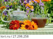 Купить «Чай с календулой», фото № 27298258, снято 26 июля 2017 г. (c) Елена Коромыслова / Фотобанк Лори