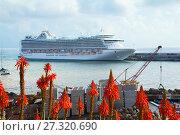 Купить «Фуншал. Мадейра. Порт.», фото № 27320690, снято 6 декабря 2013 г. (c) Галина Савина / Фотобанк Лори