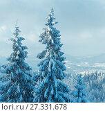 Купить «Winter Carpathian Mountains landscape.», фото № 27331678, снято 24 июня 2019 г. (c) Юрий Брыкайло / Фотобанк Лори