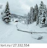 Winter Carpathian Mountains landscape. Стоковое фото, фотограф Юрий Брыкайло / Фотобанк Лори